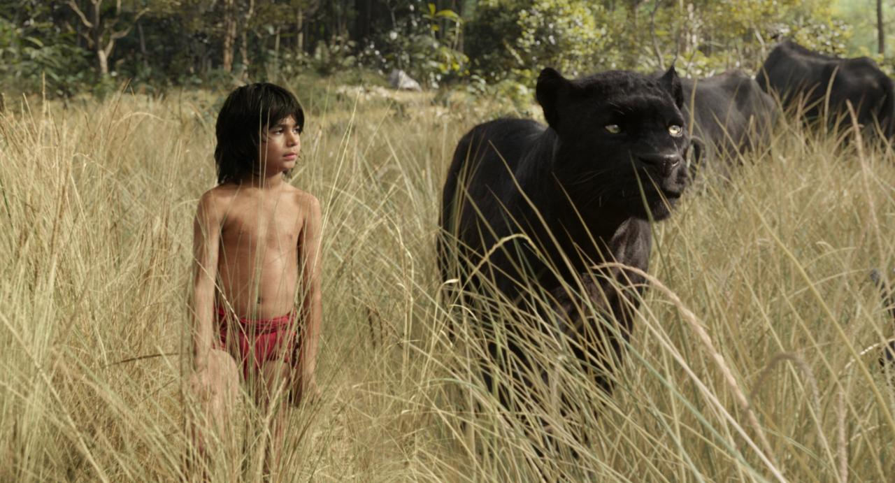 junglebook-movie-xlarge
