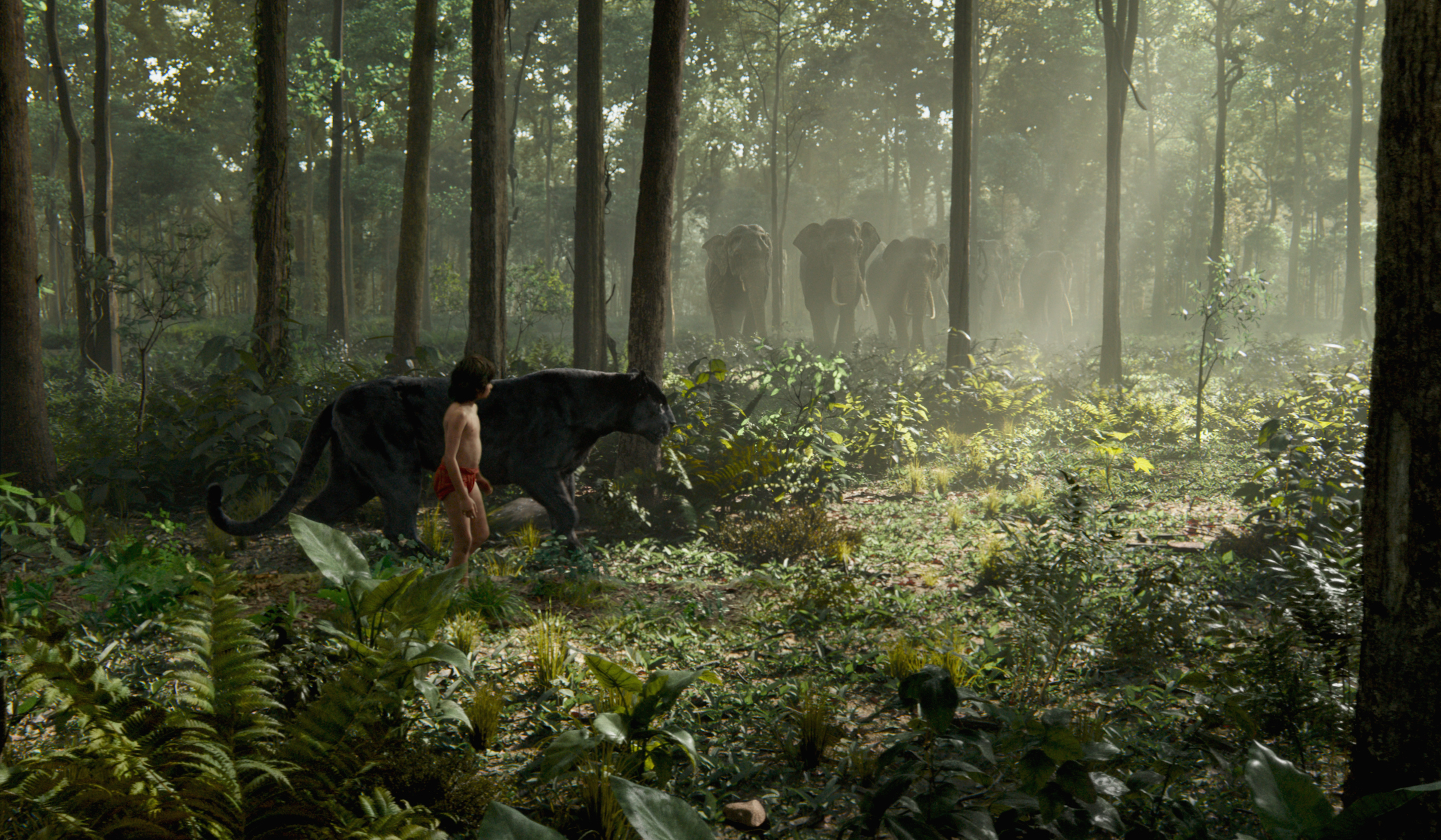 THE JUNGLE BOOK - (L-R) MOWGLI and BAGHEERA. ©2016 Disney Enterprises, Inc. All Rights Reserved.